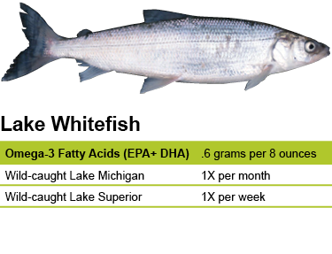 Lake Whitefish – Eat Wisconsin Fish