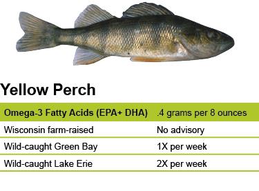 Yellow Perch – Eat Wisconsin Fish